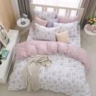 鴻宇 雙人特大兩用被套床包組 100%精梳純棉 黛兒 台灣製C20101