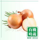 【有機認證生鮮時蔬】洋蔥 ( 550-600g /包)
