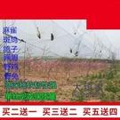 防鳥網 果園防鳥網果樹櫻桃葡萄防鳥用的網魚塘天網大棚防護尼龍網養殖網 庭院用品