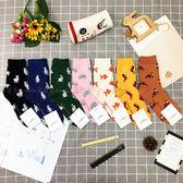 【KP】韓國 22-26cm 可愛動物 羊駝 企鵝 兔子 大象 金魚 海馬 狐狸 單色 成人襪 襪子 DTT100005