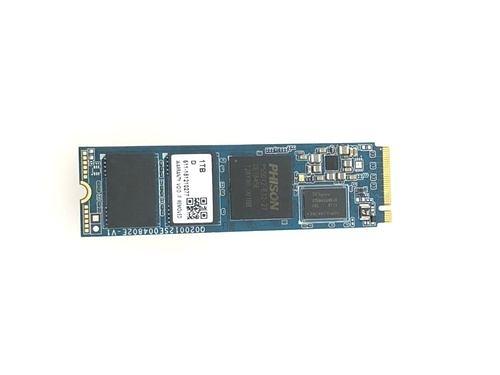 先鋒 Pioneer APS-SE20G-512固態硬碟(M.2 PCIE)(五年保)