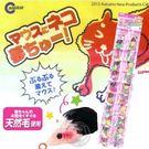 【 zoo寵物商城 】日本MARUKAN》CT-279貓用玩具耐咬玩具鼠(1隻入)