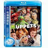 布偶歷險記藍光BD The Muppet 傑森席格艾咪亞當斯蜜拉庫妮絲大青蛙布偶秀電影版音