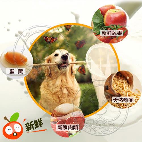 【zoo寵物商城】Happy Dog《快樂狗》羊肉高嗜口皮膚毛髮挑嘴狗飼料 試吃包 限購1包