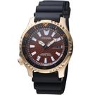 CITIZEN星辰PROMASTER系列冒險天地限量機械錶 NY0083-14X 咖啡