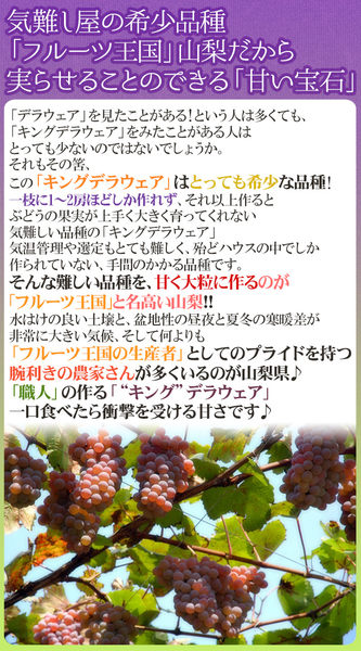 【果之蔬-全省免運】日本島根縣/山梨縣珍珠葡萄X2kg±10% (含箱重/約13-17串)