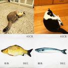 (貓草魚)現貨/貓草抱枕/貓薄荷玩具/草...