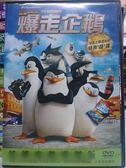 挖寶二手片-B14-064-正版DVD*動畫【馬達加斯加爆走企鵝】-電視版本的外傳動畫電影