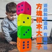 【南紡購物中心】【MACRO GIANT】15公分遊戲大骰子