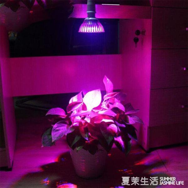 植物燈 全光譜植物補光燈多肉大棚花卉育苗開花結果防太陽led植物生長燈220V『夏茉生活』