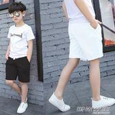 童裝男童女童白色短褲純棉中褲兒童黑色休閒運動薄款五分褲子   時尚教主