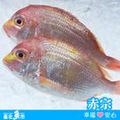 【台北魚市】 赤宗 420g...