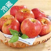 智利富士蘋果64 2入/盒(300g±5%/粒)【愛買冷藏】