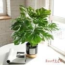 北歐創意仿真綠植室內小盆栽龜背植物客廳桌...