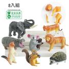 材質:塑膠(PVC),商品尺寸:單盒9x5x6cm/包裝尺寸:21.5x13x10cm
