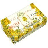 Nesti Dante 義大利手工皂 天然花妍系列-金雀花皂 250g
