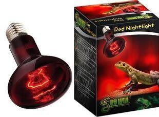 爬行動物 爬蟲 寵物加熱 紅外線聚熱夜燈 50W