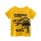 恐龍化石圖案短袖上衣 童裝 短袖上衣
