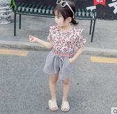 全館83折女寶寶春裝2019新款套裝0一1-2-3歲韓版潮洋氣公主兒童夏女童春裝