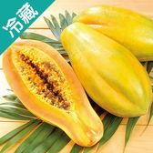 【台灣】屏東長治鮮甜木瓜2粒(600g±5%/粒)【愛買冷藏】