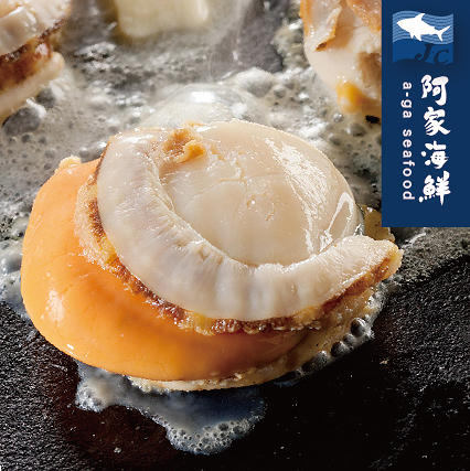 【日本原裝】大帆立貝(1kg/包)(21~25顆)L淨重800g 肥厚 乾煎 粿粉炸 火鍋 燒烤 北海道 快速出貨