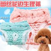 雪紡蕾絲狗狗生理褲寵物生理褲用品內褲透氣泰迪比熊貓 快速出貨