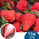 (2盒)天藍果園-大湖草莓(15顆)含運...