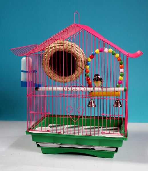 凱蒂寵物  鳥籠 虎皮牡丹鸚鵡鳥籠文鳥籠子 小型鳥籠屋型鳥籠寵物鳥用品