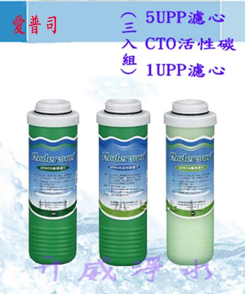 Anderson 安德成/愛普司 ★5uPP濾心+CTO壓縮活性碳+1uPP濾心★原廠公司貨