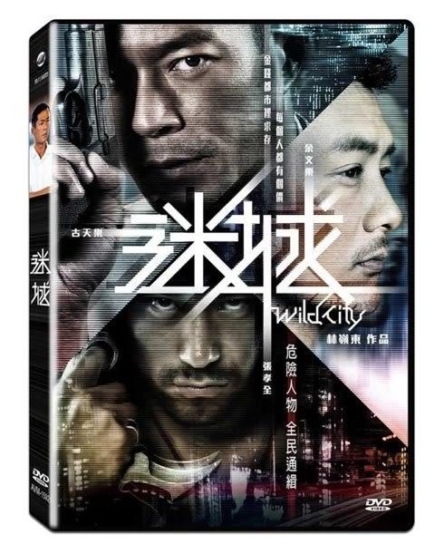 迷城 DVD  (購潮8) 4712832842883