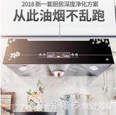 櫻花山抽油煙機壁掛式頂吸式老式中式家用吸油煙機 220vigo漾美眉韓衣