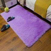 地毯地墊 歐式滿鋪絲毛地墊 客廳沙發茶幾臥室房間床邊毯榻榻米門墊 巴黎春天