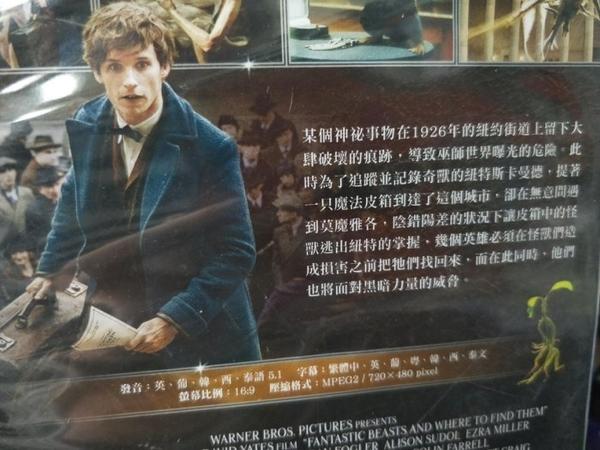 挖寶二手片-D10-037-正版DVD-電影【怪獸與牠們的產地】-JK羅琳的魔法世界(直購價)