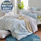 義大利La Belle《雅致絮影》雙人純棉防蹣抗菌吸濕排汗兩用被床包組