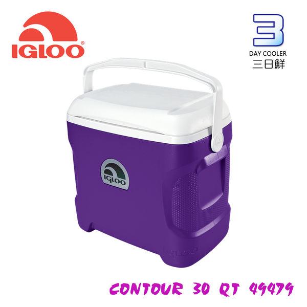 IgLoo CONTOUR系列30QT冰桶49479 紫色 / 城市綠洲專賣 (保鮮保冷、美國製造、露營、釣魚)