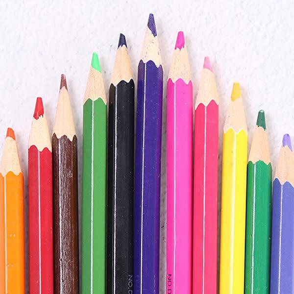 【BlueCat】動物狂歡會12色彩色鉛筆組