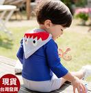 來福泳衣,D30兒童泳衣咬鯊五分袖兒童泳衣二件式小朋友游泳衣正品,售價650元