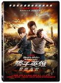 痞子英雄2:黎明再起 單碟版DVD(趙又廷/張鈞甯/黃渤)