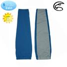 ADISI Aquatimo吸濕涼爽抗UV袖套 AS20011 (S~XL) / 城市綠洲(UPF50+、涼感、防曬)
