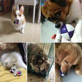 狗狗玩具耐咬小狗金毛幼犬法斗柯基大狗寵物訓練咬膠大型犬彈力球  初語生活館