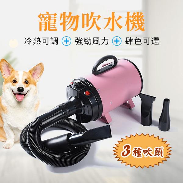 快速出貨 寵物吹水機 狗狗吹風機 大功率靜音大型犬貓咪專用烘乾吹毛神器
