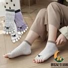 5雙裝 露趾魚嘴五指襪女純棉條紋短筒吸汗【創世紀生活館】