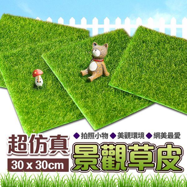 仿真景觀草皮 人工草皮 仿真草皮 人造草皮 塑膠草皮 高爾夫草 假草 草地毯【G3001】