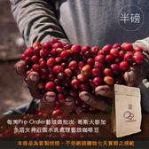 【咖啡綠商號】哥斯大黎加多塔女神莊園水洗處理藝妓咖啡豆(半磅)