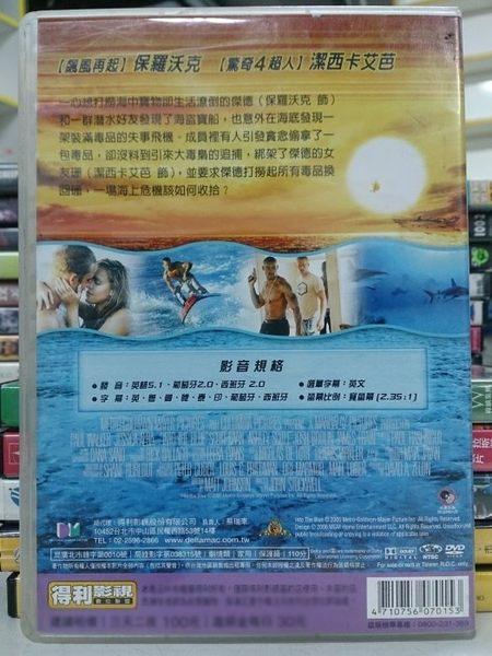 挖寶二手片-F06-068-正版DVD*電影【深海尋寶1】-保羅沃克*潔西卡艾芭