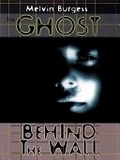 二手書博民逛書店 《The Ghost Behind the Wall》 R2Y ISBN:0786257741│Burgess