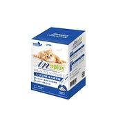 寵物家族-IN-PLUS 贏-眼睛保健-L-LYSINE 貓用離胺酸 30 克 (1 克x30 包)
