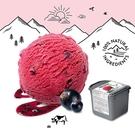 【瑞士原裝進口】Movenpick 莫凡彼冰淇淋 黑醋栗雪酪2.4L家庭號