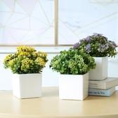 玐玖琦珥仿真花藝植物盆栽桌面擺件簡約方形白色陶瓷花盆米蘭果