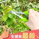 園藝剪刀 剪刀 修枝剪 牙切剪 農業剪刀 葉芽剪 果樹剪 粗枝剪刀 植物修枝剪【Q169】米菈生活館